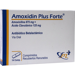 Amoxidin Plus Forte
