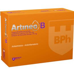 Artineo B